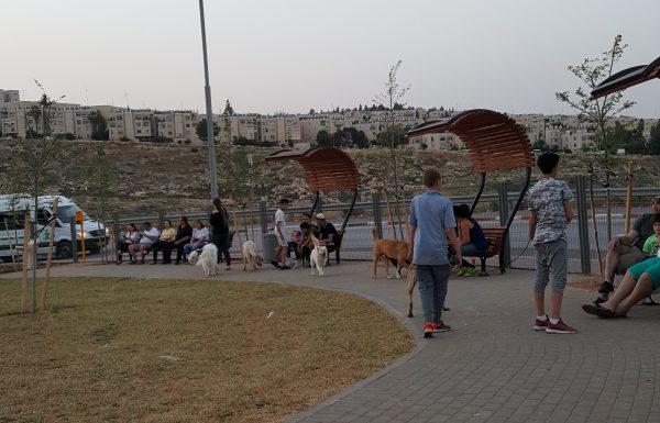 עיריית ירושלים תקים מתחם לשחרור כלבים בגינה בשכונת חומת שמואל